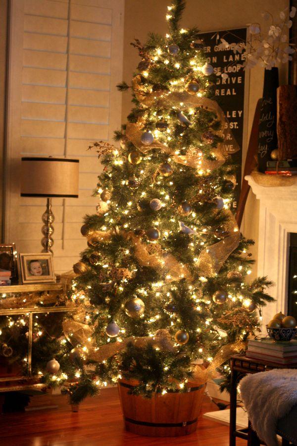 Christmas Tree in a wine barrel