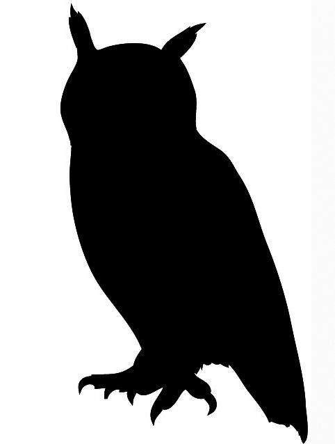 17 Best ideas about Owl Silhouette on Pinterest | Tree canvas ...
