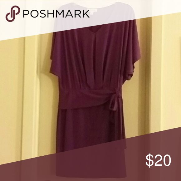 Purple Night Out Dress Purple Dress with a side belt . Great for an evening out !!! Dress Barn Dresses
