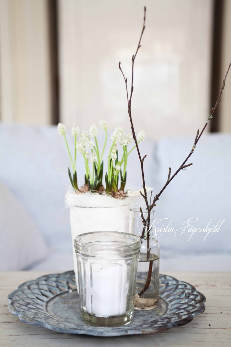 spring feeling with white grape hyacinths and birch  twigs