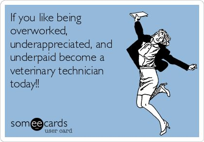 If you like being overworked, underappreciated, and underpaid become a veterinary technician today!!