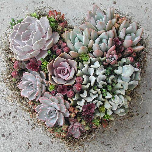 Linda Estrin Floral ArtsFloral Design, Heart Shape, Succulent Plants, Succulent Garden, Gardens, Succulents Heart,  Globes Artichokes, Heart Wreath, Floral Art