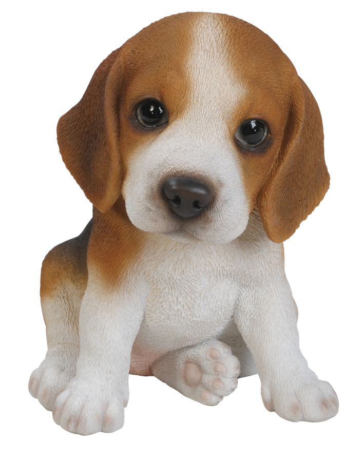 This beagle puppy is cute and would look great in any window, garden, shelf or anywhere else you like. Lets just hope this small beagle will not grow any larger.