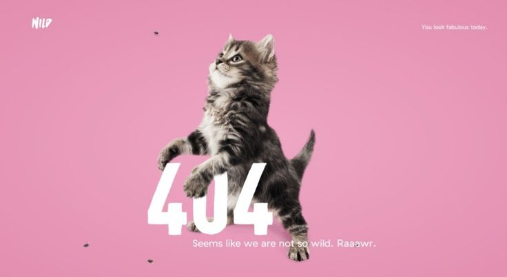 404_page_wild