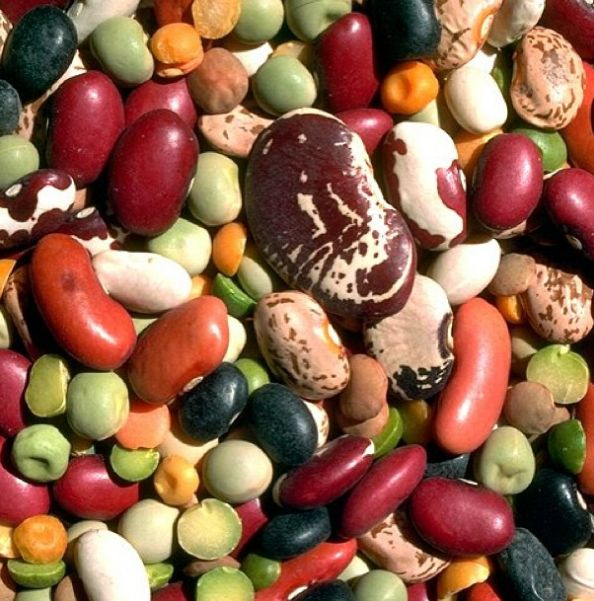 #legumi #fagioli #piselli #lenticchie #ceci #fave #soia #vegan #vegano #natuale #proteine #cucinanaturale