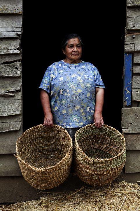 Meulín-Chiloé