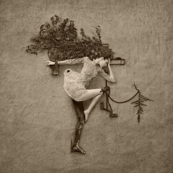 Current exhibits :: Flora :: Jennifer Hudson Fine Art