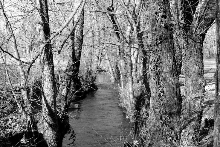"""Come comunica la natura, G. Macchioni """"Una comunicazione perfetta che mette meravigliosamente in relazione l'acqua con la terra!"""" #country #chic #nature"""