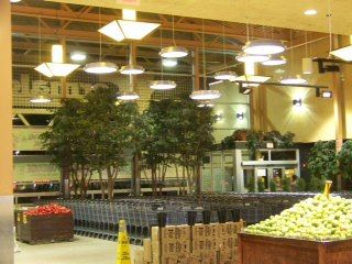 Focal point cable hung Skydome Cermaks Grocery