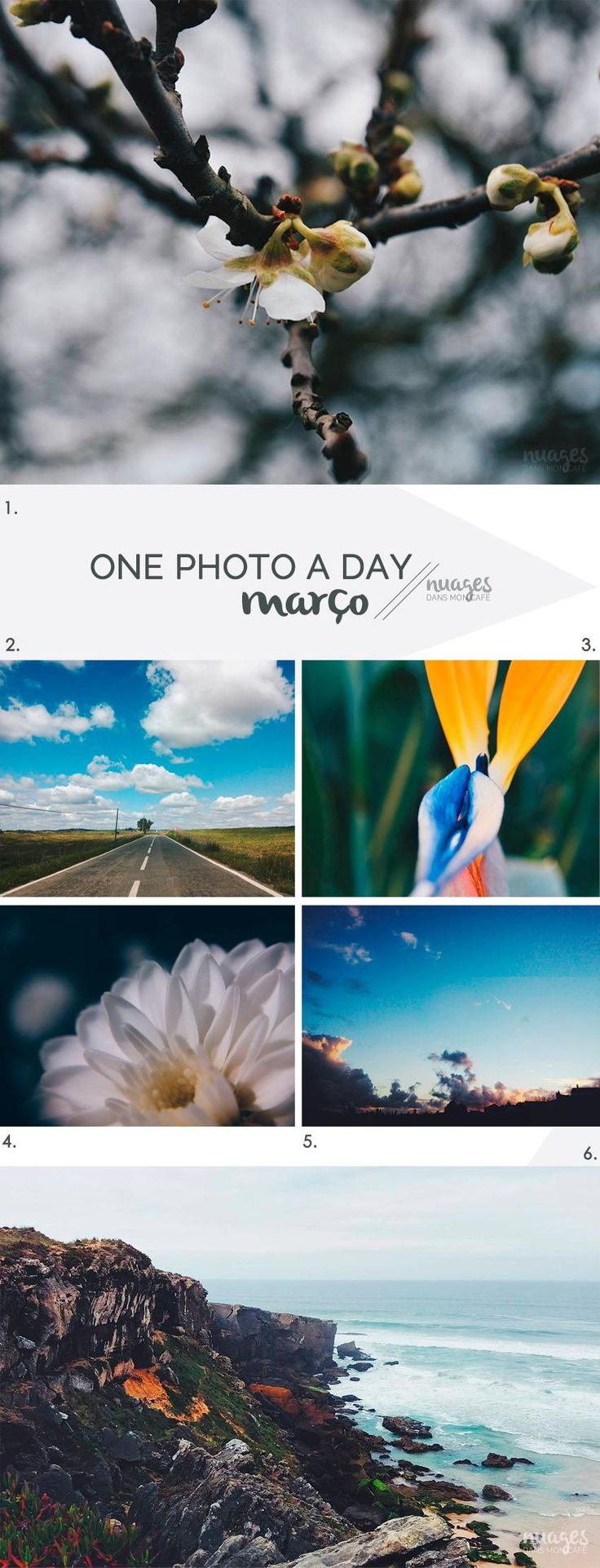One photo a day