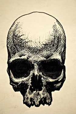 cool sketch. I need to stop pinning skulls. People might start wondering...