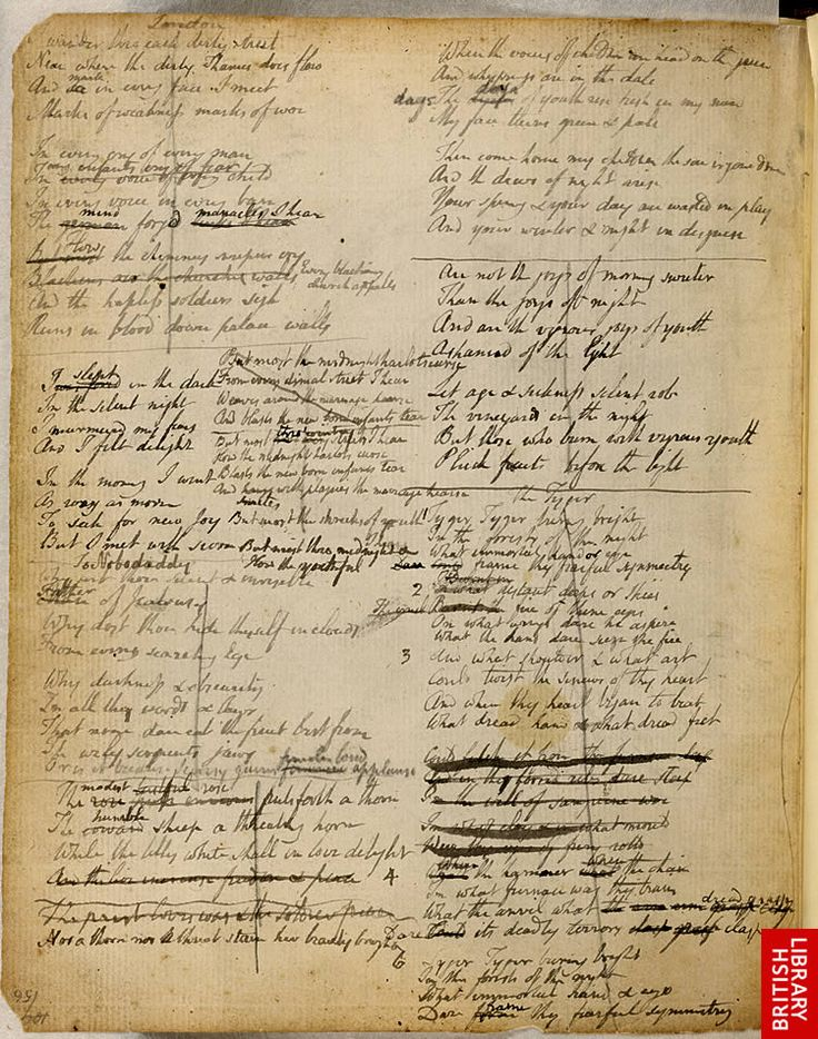 """an analysis of william blakes the tyger When i read the poem """"the tyger"""" by william blake i was immediately intrigued by the vocabulary used in the poem and how every word in the poem has an analogical meaning."""