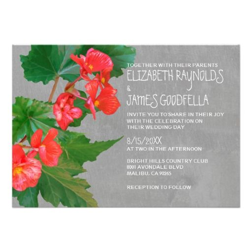 DealsBegonia Wedding Invitations Custom Announcementonline after you search a lot for where to buy