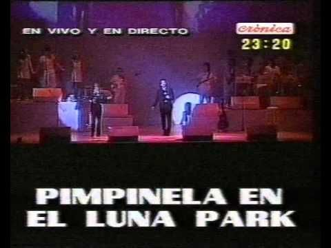 Pimpinela @Luna Park | 17 | Bonus | Un poco de amor - YouTube