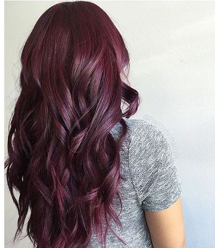 Green Hair Layer Plus Burgundy Plum Hair Color With A Dark Base Hair Color Burgundy Plum Hair Hair Styles