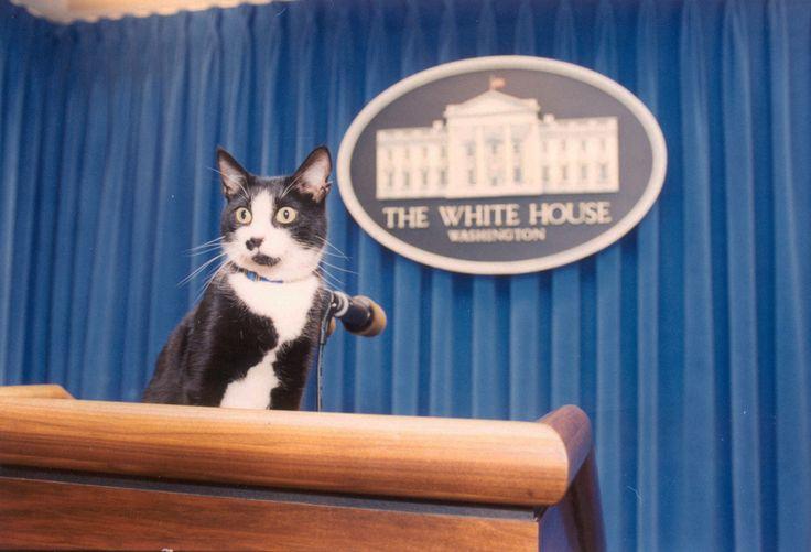 おそらくクリントン家の中で最も愛されていた。