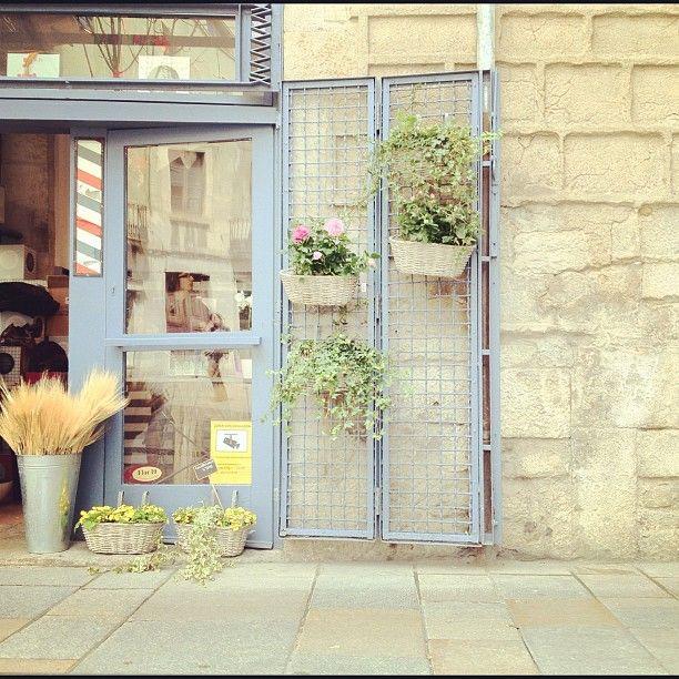 Girona Flor a Punt