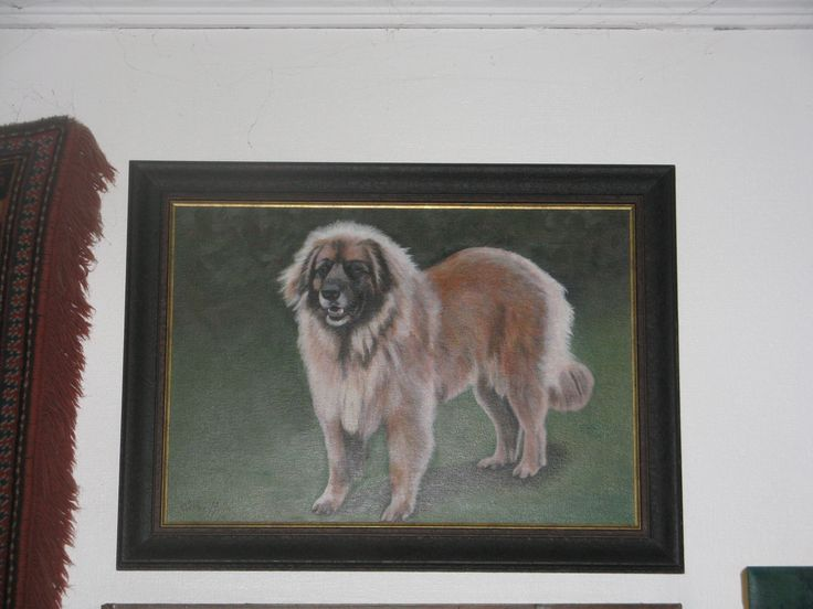 This is our Fendi, our very first Leonberger and one of our two foundation bitches. She is the mother of Stella. This is also my very first painting.