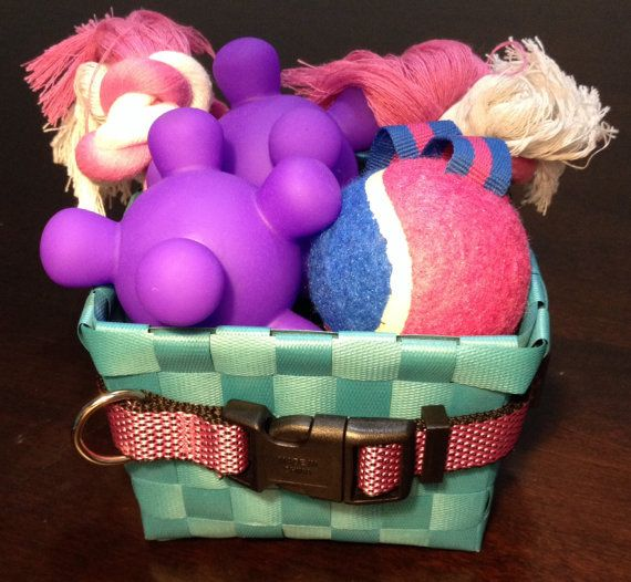 Best 25 dog gift baskets ideas on pinterest basket ideas pet gift basket dog gift basket featuring toys for by doggytrakxx 1499 negle Images