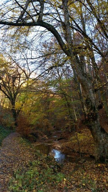 Óbányaitt:Baranya megye