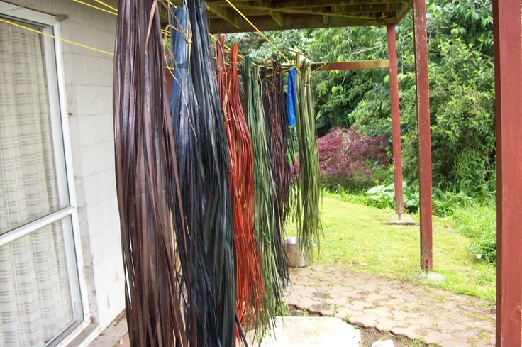 drying harakeke - some has been dyed