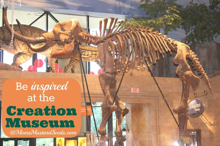 Be inspired at the creation museum Dinosaur museum ohio