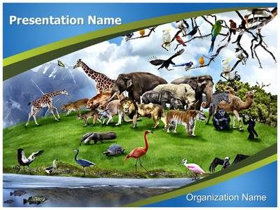 28 best nature powerpoint templates images on pinterest ppt check out our professionally designed nature beauty ppt template download our nature beauty toneelgroepblik Gallery