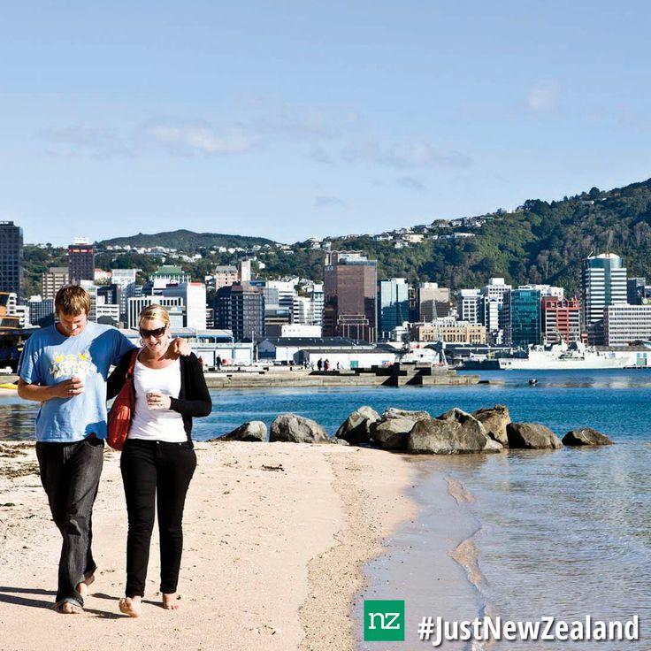 Oriental Bay is a great spot to visit in Wellington. #nz #Wellington #OrientalBay #JustNewZealand