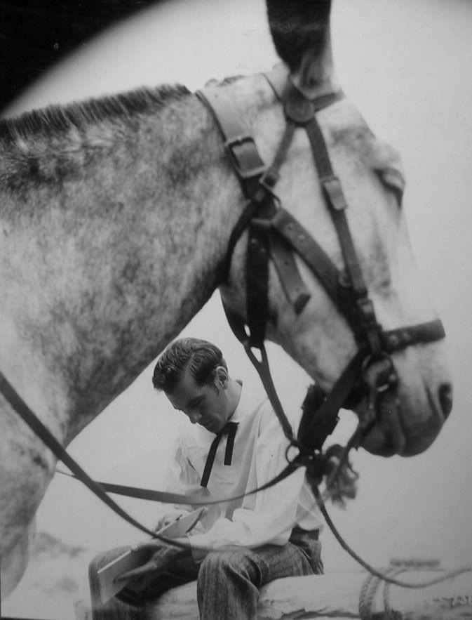 Gary Cooper Filme