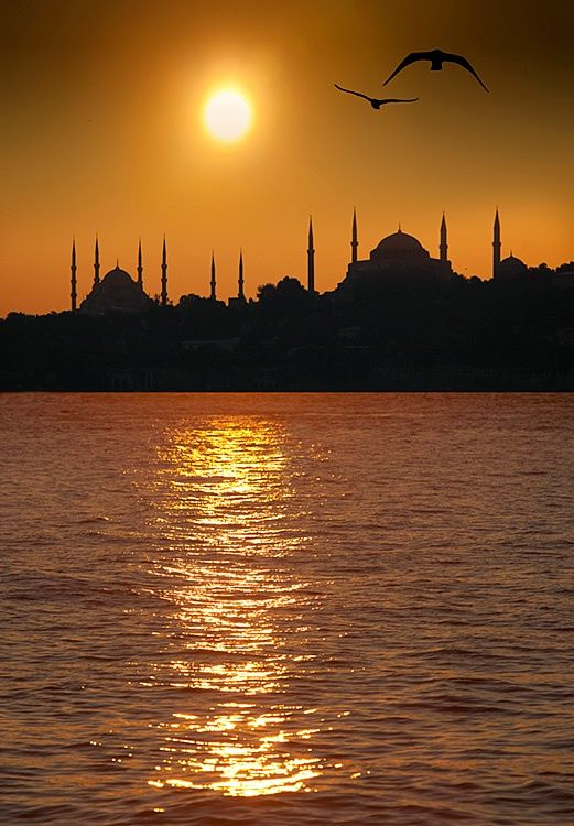 Silhouette of the Blue Mosque and Hagia Sophia at sunset, Istanbul, Turkey