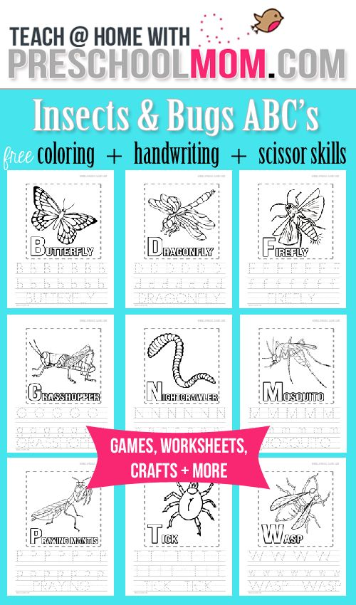 Free Insect Alphabet Coloring Pages Handwriting Practice