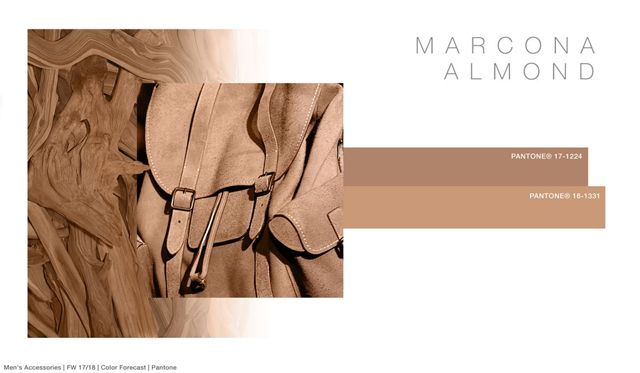 #FashionSnoops FW 17/18 color on #WeConnectFashion. Men's Accessories: Marcona Almond - Atmosphere Faded Mid-Tones Palette