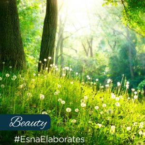 """Beauty arises in the stillness of your presence…."" Esna gives advices about Beauty"