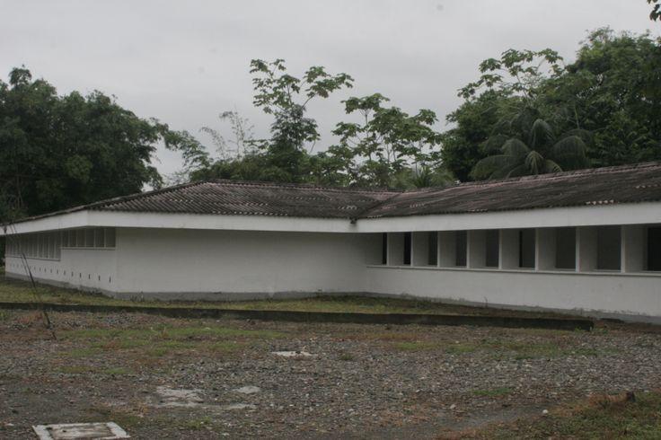 Tulenapa
