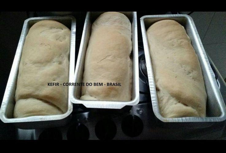 PÃO DE KEFIR DE LEITE