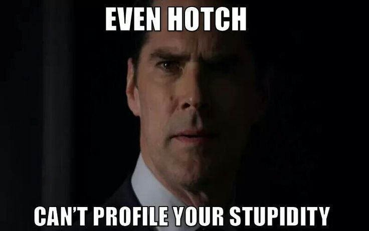 Criminal Minds   You'd have to be a special level of stupid if Hotch couldn't profile it!