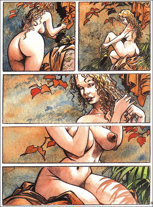 Troubles Fêtes by Loisel: Comics Art, Erotic Drawing Art, Comic Books, Things, Comic S Books, Drawing
