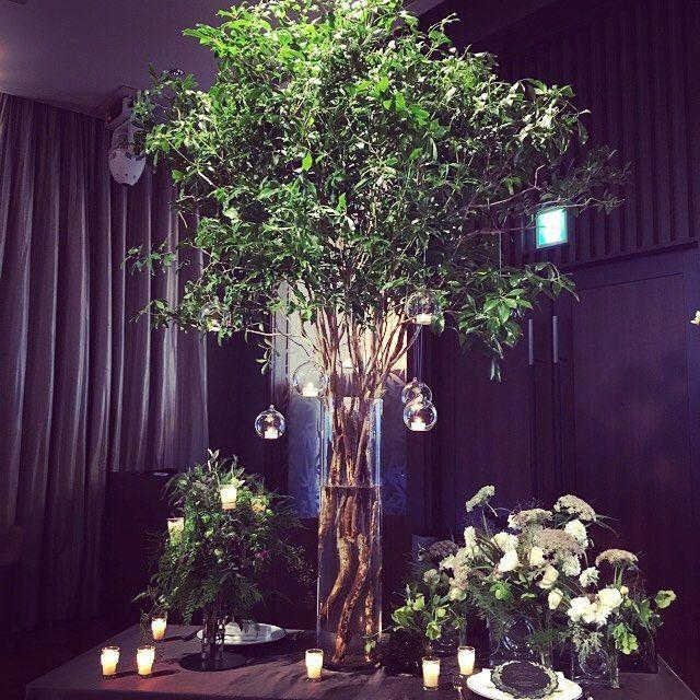 2016.04.03#装花 イメージ  木にキャンドルをつけて披露宴会場内やウェルカムスペース高砂付近を飾れたらいいなぁと思ってます  私達の披露宴イメージカラーは今のところ#グリーン #ホワイト   理由は 2人とものんびりマイペースなところがあって緑や自然が好きこれまでのデートもプロポーズの場所も緑あふれるところだったことゲストの方にも東京のど真ん中だけど自然を感じて穏やかにゆったりした時間を過ごしてもらいたい 披露宴がクリスマス前なのでクリスマスパーティーをイメージしたい って感じです ホテルの方に 2人はなぜ挙式披露宴を行うのか 2人をつなぐものは何か を考えてそこからイメージをしたらいいと言われこれまでの2人のことを振り返りながら披露宴のイメージ考えました  #プレ花嫁 #パレスホテル東京 #ウェディングフェア #ウェディング #パレス花嫁 #palacehoteltokyo #キャンドル #クリスマス #2016冬婚 #ウェディング準備 #パレスホテルウェディング #緑 #白 #装花 #披露宴 #イメージカラー #装花装飾 by yuri08225249