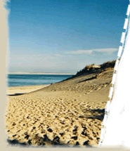 www.Biscarrosse.com  France  camping with children. going in August 2012.