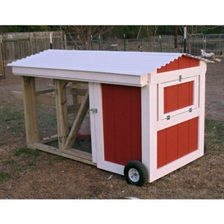 64 Best Images About Chickens On Pinterest Chicken Coop