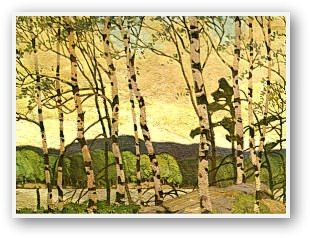 A.J. Casson  Cool Weather