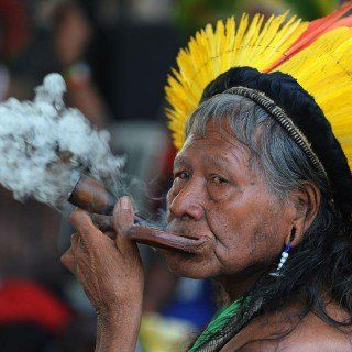 índios brasileiros