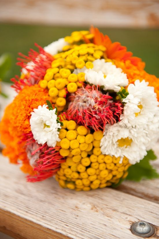 Bouquet in red, orange, yellow, and white, with pin cushion protea, asters, and chamomile.