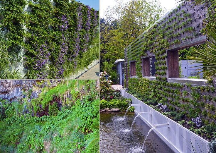 vægplanter, vægplante, grønne vægge, lodrette haver, hængende haver