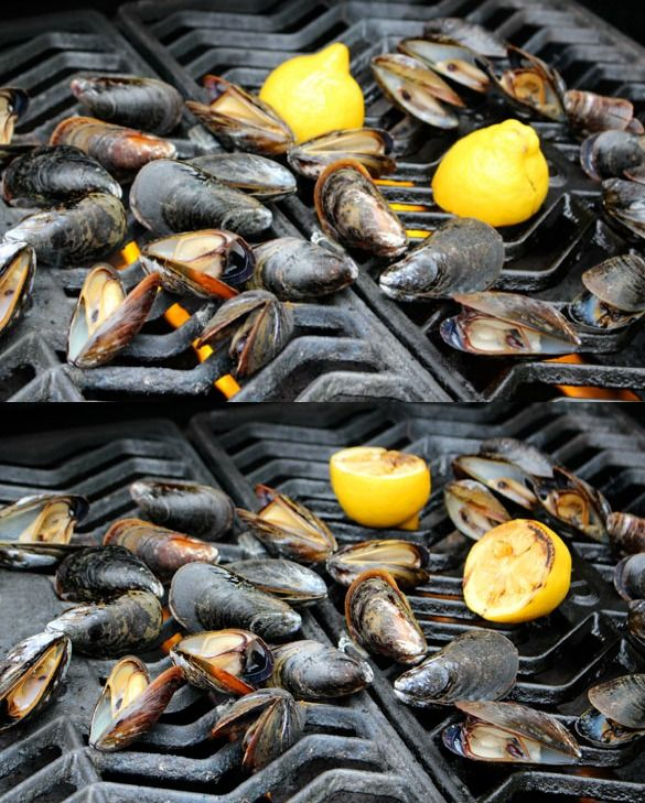 grilled mussels Collage Grilled Mussels with Garlic, Butter and Lemon