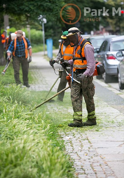 Koszenie i utrzymanie zieleni w obiektach miejskich