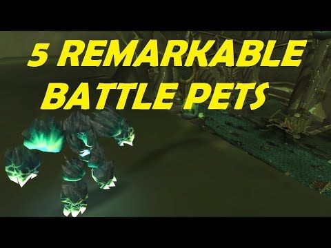 5 Remarkable Battle Pets Easy to Farm World of