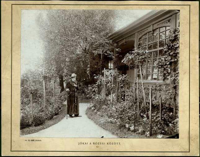 Jókai Mór a rózsáira között a balatonfüredi villájában.
