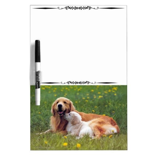 Decorative White Boards 104 best dog themed dry erase boards images on pinterest | dry