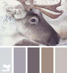 Bekijk 'Kleurinspiratie rendier' op Woontrendz ♥ Dagelijks woontrends ontdekken en wooninspiratie opdoen!